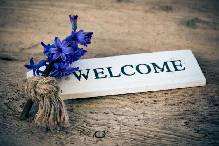 welcome writing and hyacinth