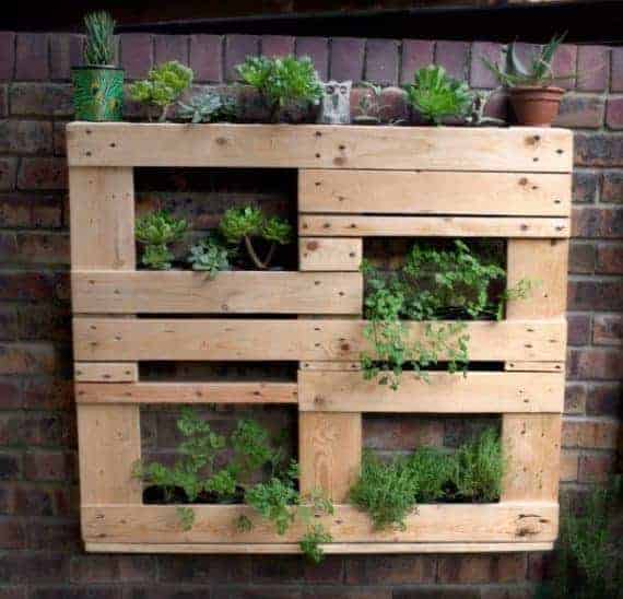 Vertical-Garden-made-from-Pallets
