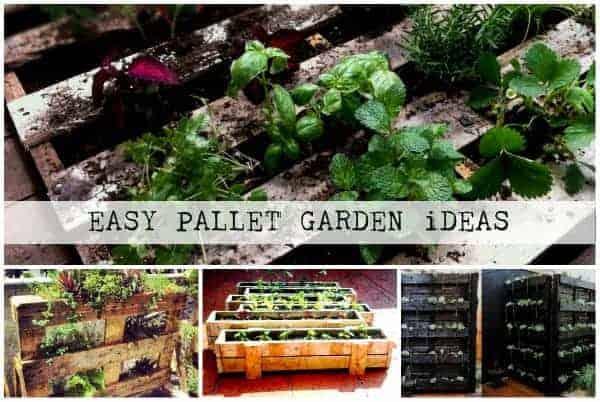 Garden Ideas Pallets: Pallet Garden Ideas