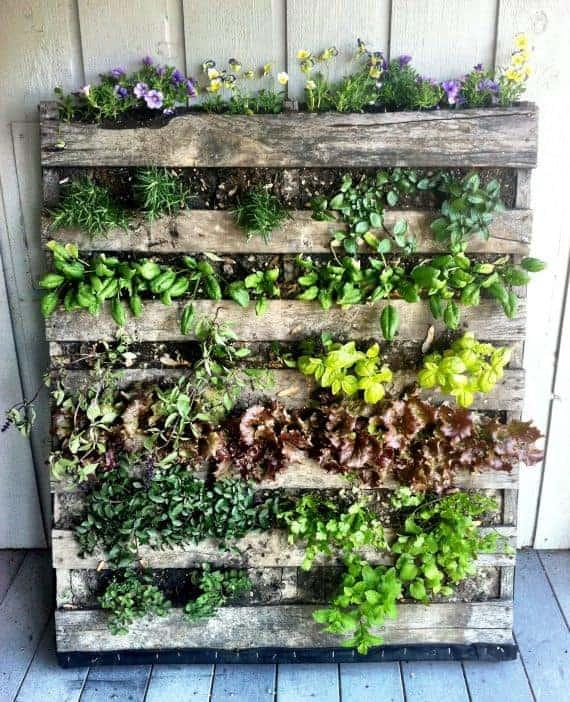 herb-pallet-vertical-garden