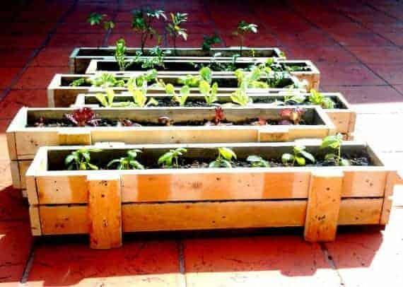 palletplanter